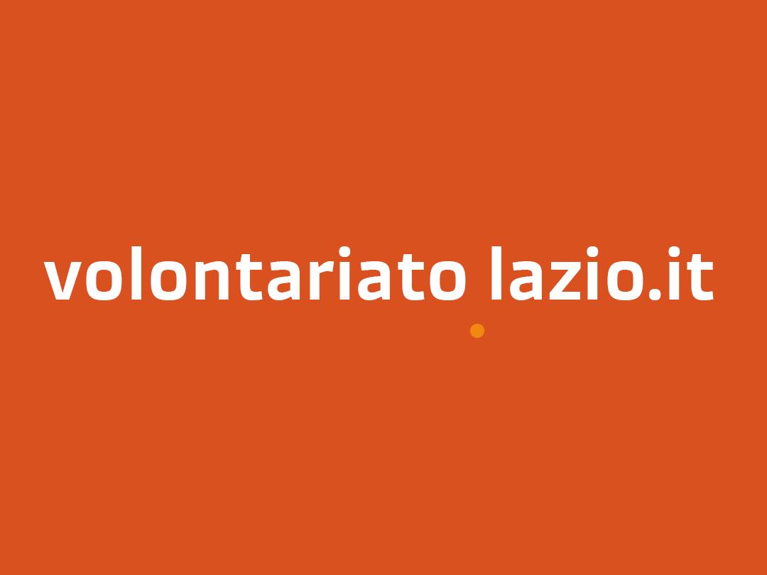Immagine rappresentativa di www.volontariatolazio.it